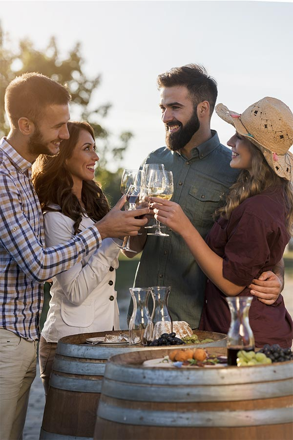 Enoturismo, conoce el maravilloso mundo del vino