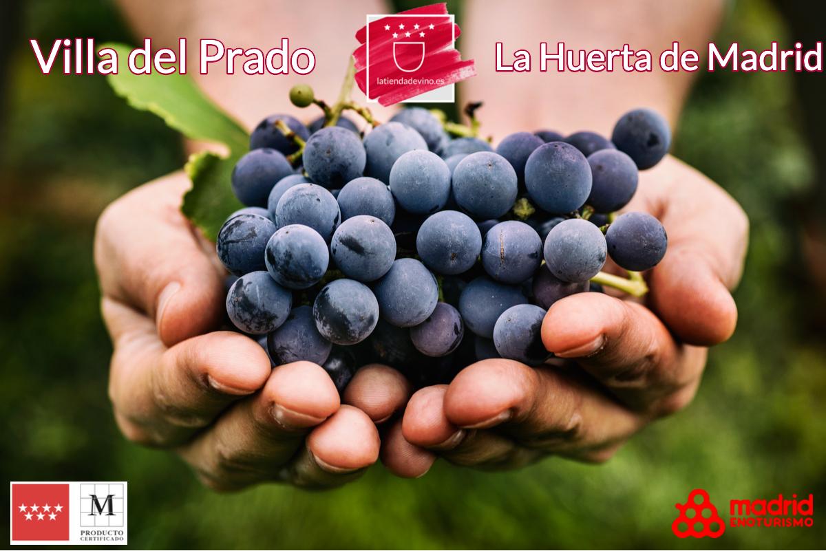 "Historia del vino en Villa Del Prado, la ""huerta de Madrid"""