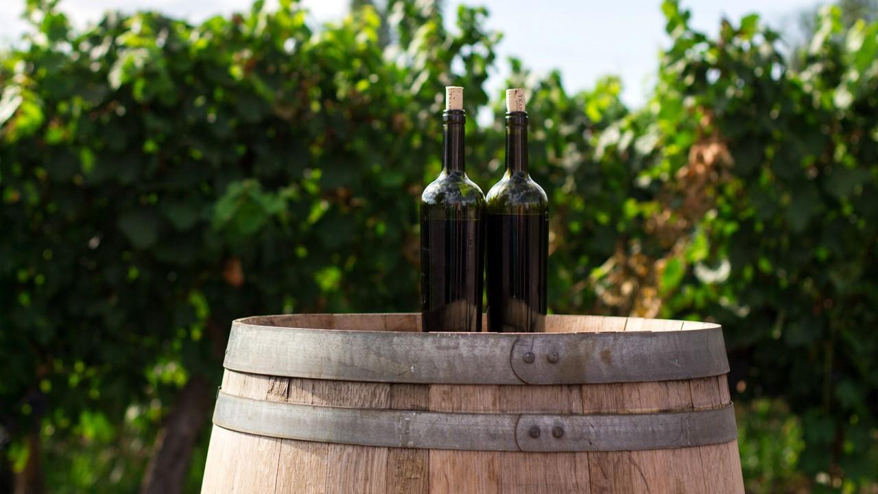 mejor vino tinto de madrid
